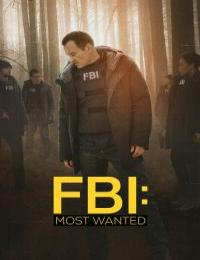 FBI Most Wanted S03E03